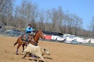 Arkansas Junior Rodeo Event at Cave City