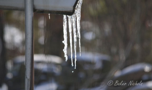 in rays of the sun-- they drip away to nothingness the icicles