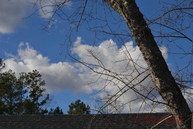 clouds in winter sky