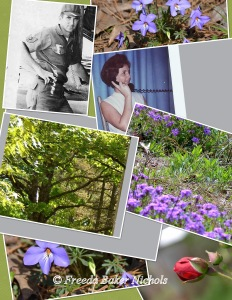 Collage for blog 1